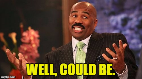 Steve Harvey Meme | WELL, COULD BE. | image tagged in memes,steve harvey | made w/ Imgflip meme maker