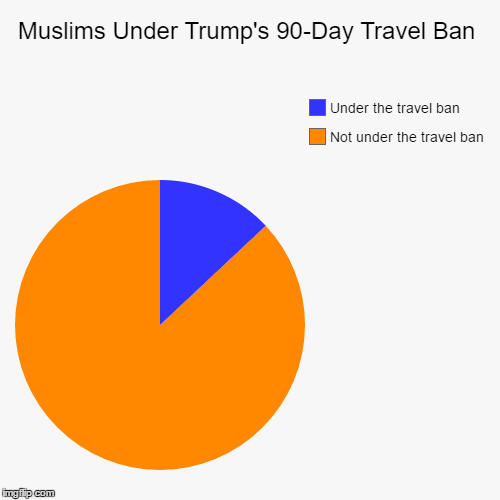 Trump's 90-Day Travel Ban | Muslims Under Trump's 90-Day Travel Ban | Not under the travel ban, Under the travel ban | image tagged in funny,pie charts | made w/ Imgflip pie chart maker