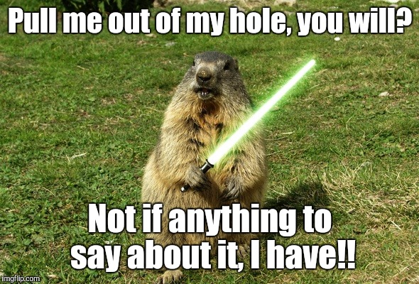 Strong is Phil with The Force! | Pull me out of my hole, you will? Not if anything to say about it, I have!! | image tagged in groundhog day,jedi,light saber | made w/ Imgflip meme maker