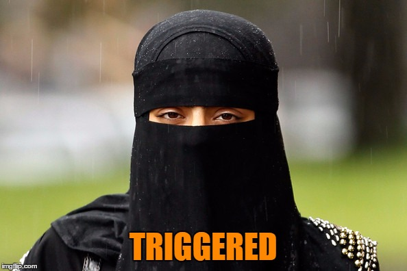 TRIGGERED | made w/ Imgflip meme maker