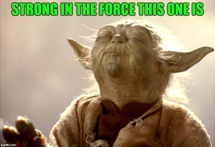 Yoda Is Very Pleased | STRONG IN THE FORCE THIS ONE IS | image tagged in yoda is very pleased | made w/ Imgflip meme maker