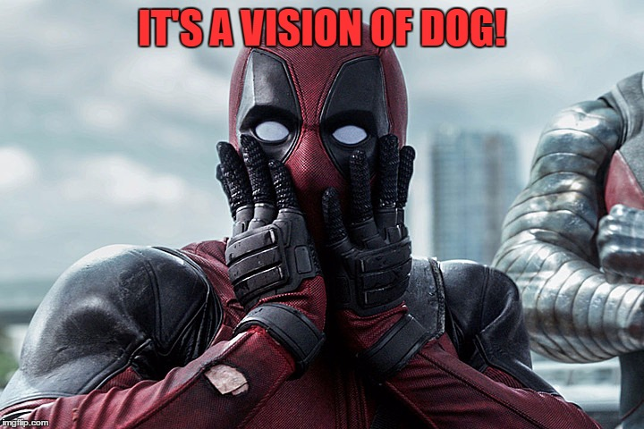 Deadpool - Gasp | IT'S A VISION OF DOG! | image tagged in deadpool - gasp | made w/ Imgflip meme maker