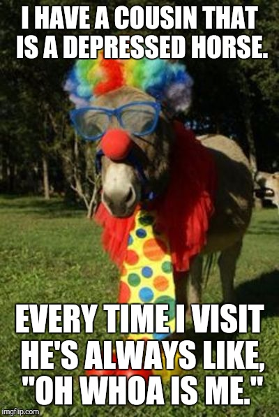 "Ass clown | I HAVE A COUSIN THAT IS A DEPRESSED HORSE. EVERY TIME I VISIT HE'S ALWAYS LIKE, ""OH WHOA IS ME."" 