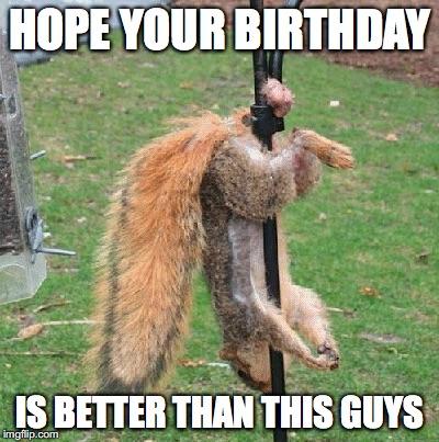 happy birthday meme for guys Happy Birthday Nuts   Imgflip happy birthday meme for guys