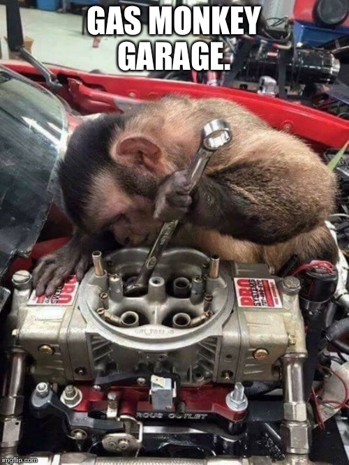 GAS MONKEY GARAGE. | image tagged in grease monkey | made w/ Imgflip meme maker