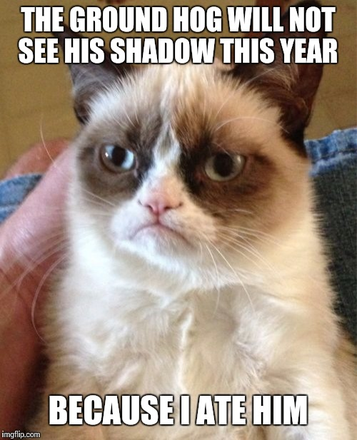 Grumpy Cat Meme | THE GROUND HOG WILL NOT SEE HIS SHADOW THIS YEAR BECAUSE I ATE HIM | image tagged in memes,grumpy cat | made w/ Imgflip meme maker