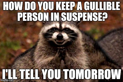 Evil Plotting Raccoon Meme | HOW DO YOU KEEP A GULLIBLE PERSON IN SUSPENSE? I'LL TELL YOU TOMORROW | image tagged in memes,evil plotting raccoon,troll | made w/ Imgflip meme maker