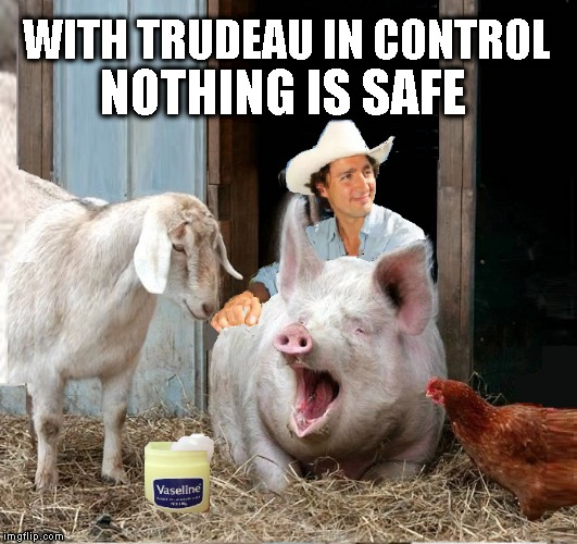 Trudeau in Control  | WITH TRUDEAU IN CONTROL NOTHING IS SAFE | image tagged in justin trudeau,funny meme,political meme | made w/ Imgflip meme maker