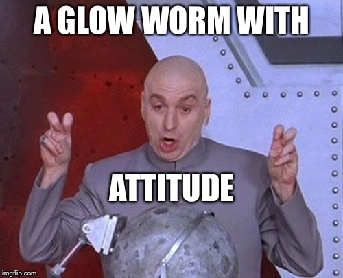 Dr Evil Laser Meme | A GLOW WORM WITH ATTITUDE | image tagged in memes,dr evil laser | made w/ Imgflip meme maker