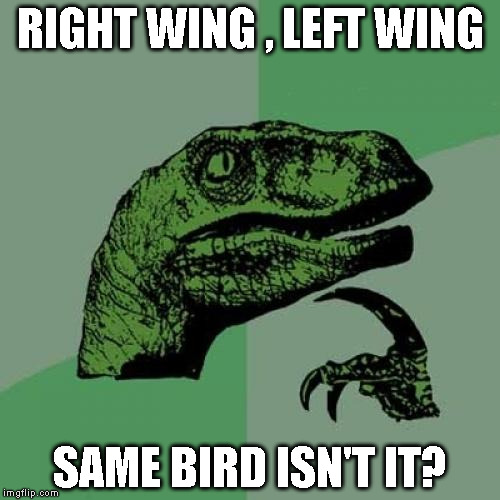 Philosoraptor Meme | RIGHT WING , LEFT WING SAME BIRD ISN'T IT? | image tagged in memes,philosoraptor | made w/ Imgflip meme maker