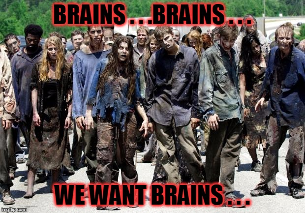 zombie apocalypse or protest march? | BRAINS . . .BRAINS . . . WE WANT BRAINS . . . | image tagged in walking dead meme,protest,protesters,politics,america | made w/ Imgflip meme maker