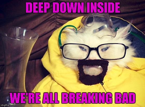 I may have to binge watch Breaking Bad one of these days. | DEEP DOWN INSIDE WE'RE ALL BREAKING BAD | image tagged in cat breaking bad,memes,funny,breaking bad,cats,funny cats | made w/ Imgflip meme maker