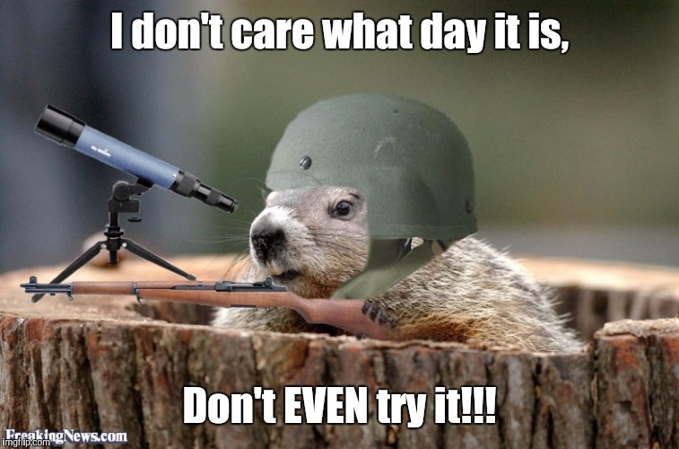 General Phil | I don't care what day it is, Don't EVEN try it!!! | image tagged in groundhog day | made w/ Imgflip meme maker