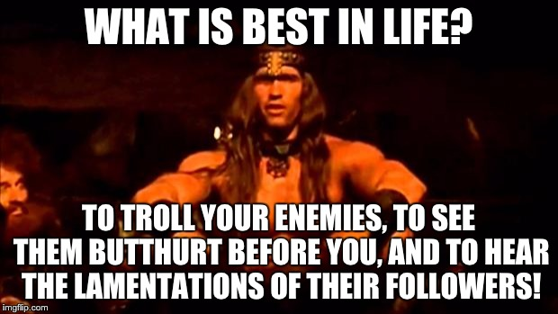 Troll Your Enemies | WHAT IS BEST IN LIFE? TO TROLL YOUR ENEMIES, TO SEE THEM BUTTHURT BEFORE YOU, AND TO HEAR THE LAMENTATIONS OF THEIR FOLLOWERS! | image tagged in conan crush your enemies | made w/ Imgflip meme maker