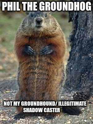 groundhog | PHIL THE GROUNDHOG NOT MY GROUNDHOUND/ ILLEGITIMATE SHADOW CASTER | image tagged in groundhog | made w/ Imgflip meme maker