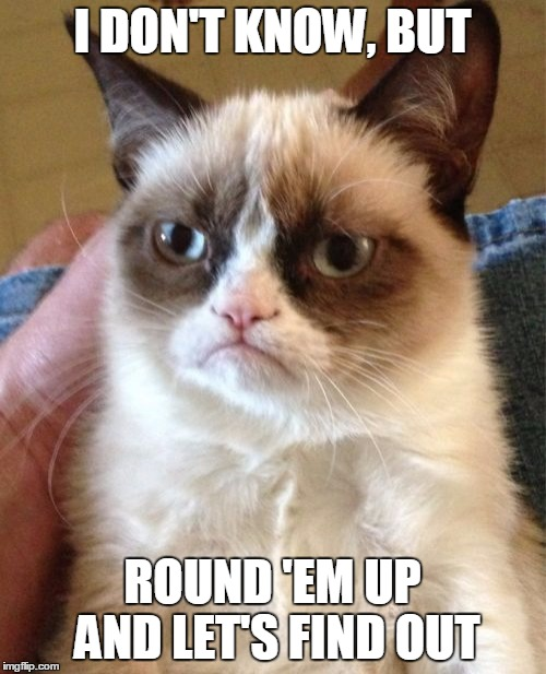 Grumpy Cat Meme | I DON'T KNOW, BUT ROUND 'EM UP AND LET'S FIND OUT | image tagged in memes,grumpy cat | made w/ Imgflip meme maker