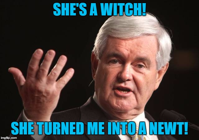 SHE'S A WITCH! SHE TURNED ME INTO A NEWT! | made w/ Imgflip meme maker