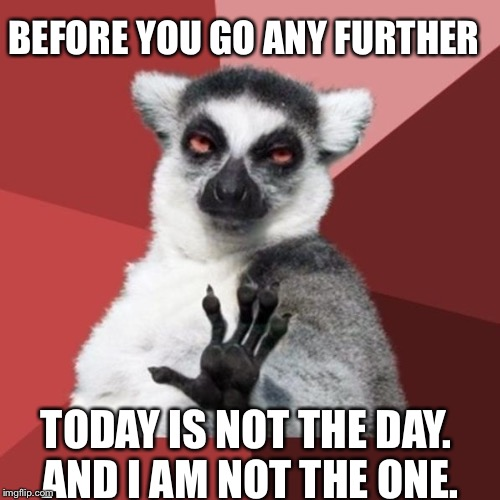 Chill Out Lemur Meme |  BEFORE YOU GO ANY FURTHER; TODAY IS NOT THE DAY. AND I AM NOT THE ONE. | image tagged in memes,chill out lemur | made w/ Imgflip meme maker