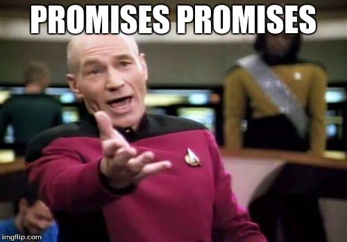 Picard Wtf Meme | PROMISES PROMISES | image tagged in memes,picard wtf | made w/ Imgflip meme maker
