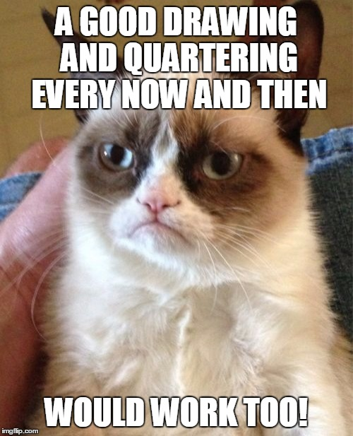 Grumpy Cat Meme | A GOOD DRAWING AND QUARTERING EVERY NOW AND THEN WOULD WORK TOO! | image tagged in memes,grumpy cat | made w/ Imgflip meme maker