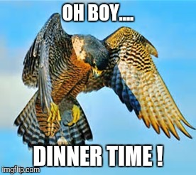OH BOY.... DINNER TIME ! | made w/ Imgflip meme maker