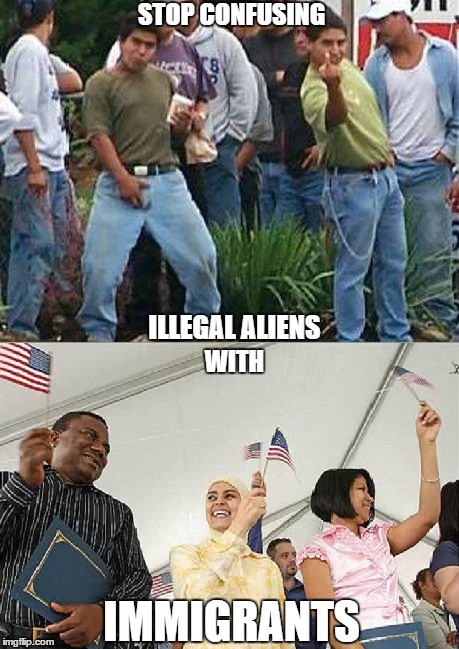 They are not the same | STOP CONFUSING ILLEGAL ALIENS WITH IMMIGRANTS | image tagged in immigrants,illegals | made w/ Imgflip meme maker