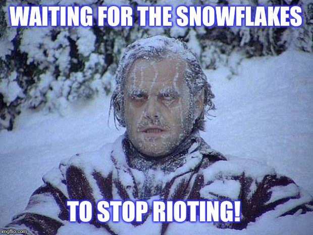 Jack Nicholson The Shining Snow Meme | WAITING FOR THE SNOWFLAKES TO STOP RIOTING! | image tagged in memes,jack nicholson the shining snow | made w/ Imgflip meme maker