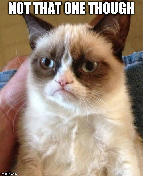 Grumpy Cat Meme | NOT THAT ONE THOUGH | image tagged in memes,grumpy cat | made w/ Imgflip meme maker