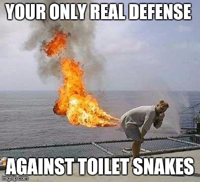 Darti Boy |  YOUR ONLY REAL DEFENSE; AGAINST TOILET SNAKES | image tagged in memes,darti boy | made w/ Imgflip meme maker