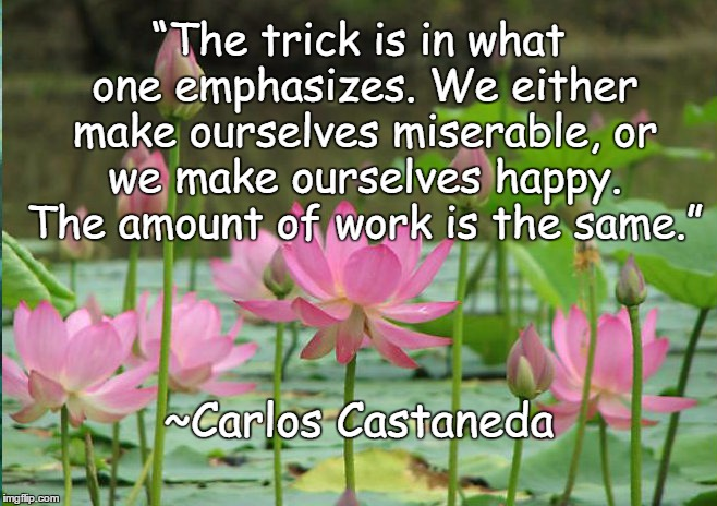 "Lotus Flowers |  ""The trick is in what one emphasizes. We either make ourselves miserable, or we make ourselves happy. The amount of work is the same.""; ~Carlos Castaneda 