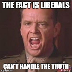 You can't handle the truth | THE FACT IS LIBERALS CAN'T HANDLE THE TRUTH | image tagged in you can't handle the truth | made w/ Imgflip meme maker