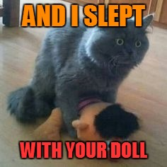 AND I SLEPT WITH YOUR DOLL | made w/ Imgflip meme maker