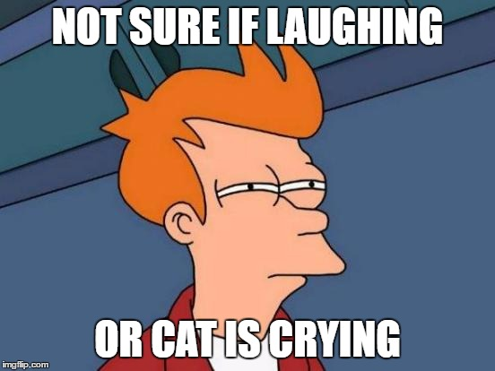 Futurama Fry Meme | NOT SURE IF LAUGHING OR CAT IS CRYING | image tagged in memes,futurama fry | made w/ Imgflip meme maker