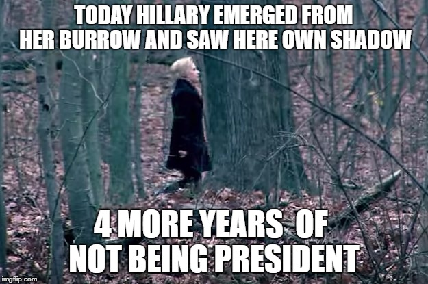 Not Prez |  TODAY HILLARY EMERGED FROM HER BURROW AND SAW HERE OWN SHADOW; 4 MORE YEARS  OF NOT BEING PRESIDENT | image tagged in groundhog day | made w/ Imgflip meme maker