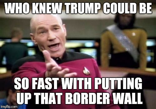 Picard Wtf Meme | WHO KNEW TRUMP COULD BE SO FAST WITH PUTTING UP THAT BORDER WALL | image tagged in memes,picard wtf | made w/ Imgflip meme maker