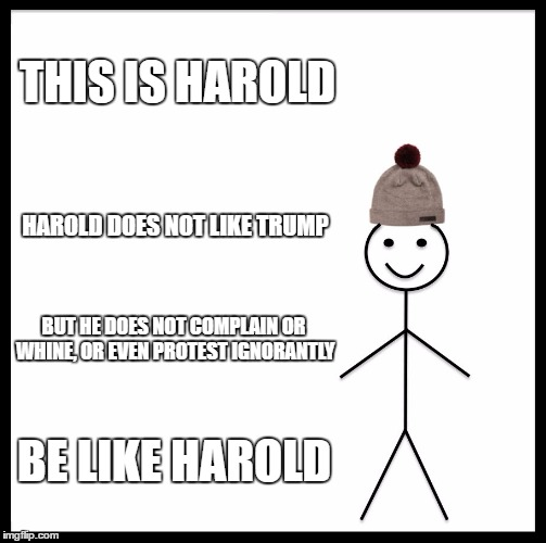 Be Like Bill Meme | THIS IS HAROLD HAROLD DOES NOT LIKE TRUMP BUT HE DOES NOT COMPLAIN OR WHINE, OR EVEN PROTEST IGNORANTLY BE LIKE HAROLD | image tagged in memes,be like bill | made w/ Imgflip meme maker
