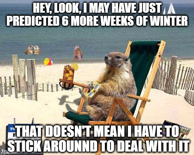 Phil has predicted 6 more weeks of winter to start 2017 now his job is done.... his message: Sucks to be you! | HEY, LOOK, I MAY HAVE JUST PREDICTED 6 MORE WEEKS OF WINTER THAT DOESN'T MEAN I HAVE TO STICK AROUNND TO DEAL WITH IT | image tagged in memes,winter,groundhog day,vacation,prediction,sucks to be you | made w/ Imgflip meme maker