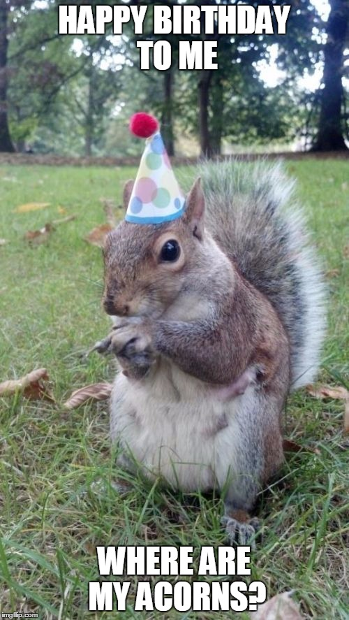 Super Birthday Squirrel | HAPPY BIRTHDAY TO ME WHERE ARE MY ACORNS? | image tagged in memes,super birthday squirrel | made w/ Imgflip meme maker