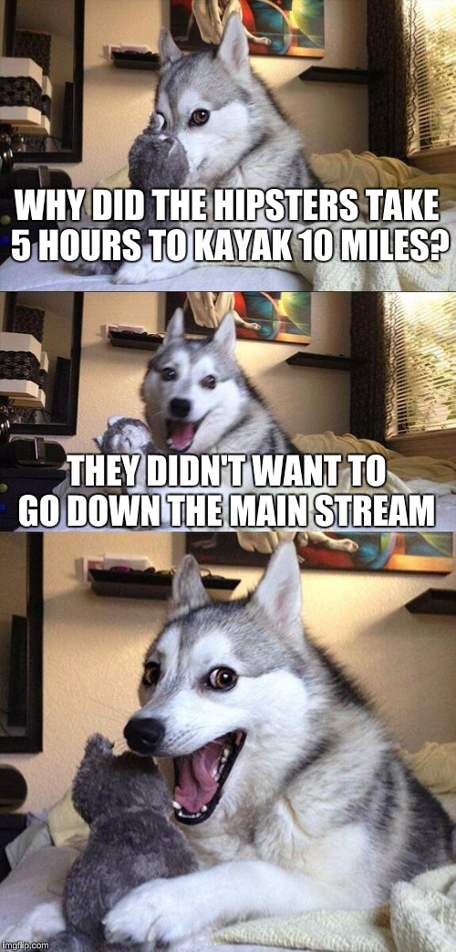Bad Pun Dog Meme |  WHY DID THE HIPSTERS TAKE 5 HOURS TO KAYAK 10 MILES? THEY DIDN'T WANT TO GO DOWN THE MAIN STREAM | image tagged in memes,bad pun dog | made w/ Imgflip meme maker