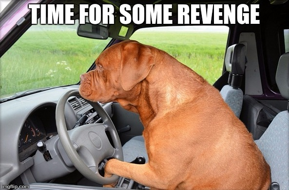TIME FOR SOME REVENGE | made w/ Imgflip meme maker