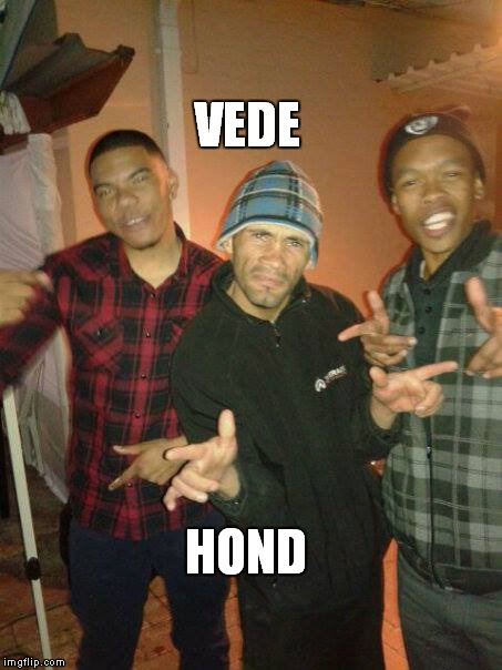 VEDE HOND | image tagged in memes | made w/ Imgflip meme maker