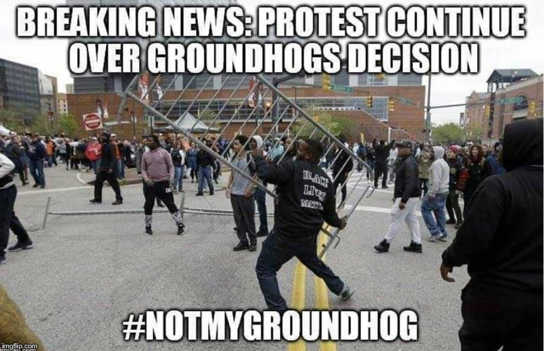 Not My Groundhog | . | image tagged in memes,funny,groundhog day,repost | made w/ Imgflip meme maker