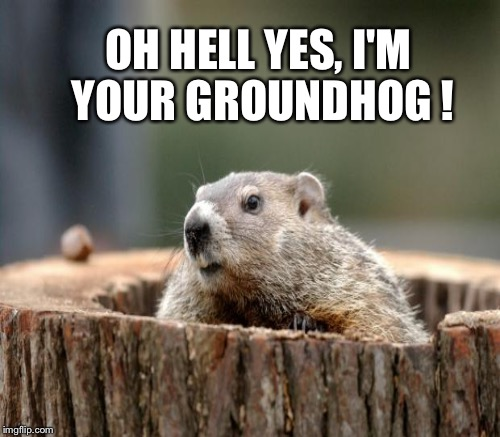 OH HELL YES, I'M YOUR GROUNDHOG ! | made w/ Imgflip meme maker