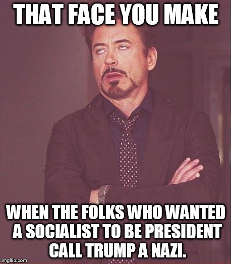 News flash: NAZI is short for national socialist | THAT FACE YOU MAKE WHEN THE FOLKS WHO WANTED A SOCIALIST TO BE PRESIDENT CALL TRUMP A NAZI. | image tagged in memes,face you make robert downey jr | made w/ Imgflip meme maker