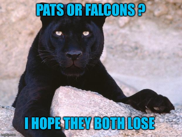 NFL memes: Carolina Panthers (Why did Gettleman release ... |Panthers Lose Meme