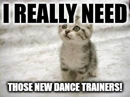 Sad Cat | I REALLY NEED THOSE NEW DANCE TRAINERS! | image tagged in memes,sad cat | made w/ Imgflip meme maker