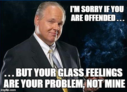 I'M SORRY IF YOU ARE OFFENDED . . . . . . BUT YOUR GLASS FEELINGS ARE YOUR PROBLEM, NOT MINE | made w/ Imgflip meme maker