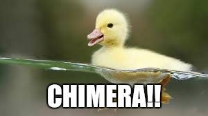 CHIMERA!! | made w/ Imgflip meme maker