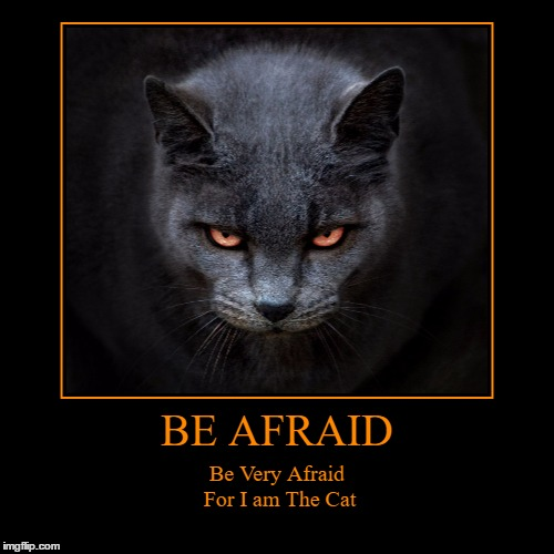 Be Very Afraid: For I Am The Cat