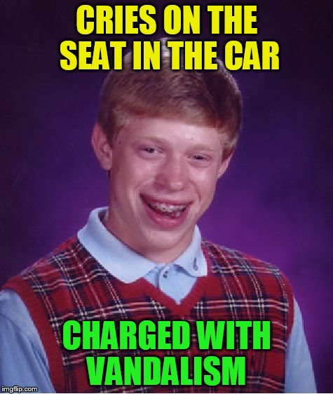 Bad Luck Brian Meme | CRIES ON THE SEAT IN THE CAR CHARGED WITH VANDALISM | image tagged in memes,bad luck brian | made w/ Imgflip meme maker